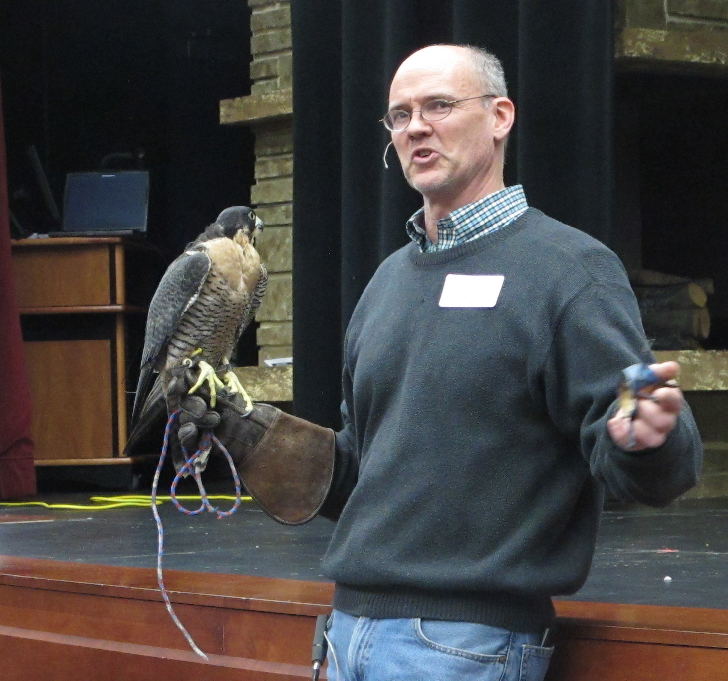 Falconer Andrew Weaver holds his peregrine falcon, Pickle, during a Science Night demonstration at the Cambridge auditorium on Feb. 27. PHOTO COURTESY OF ANGIE ANDERSON